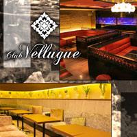 【写真】Club Vellugue